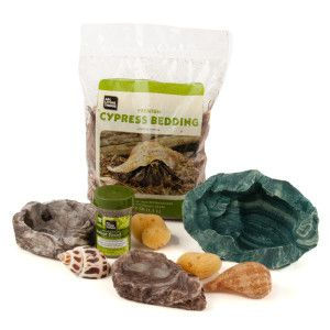 All Living Things Hermit Crab Starter Kit Habitat Decor Petsmart Hermit Crab Reptile Room Food Animals