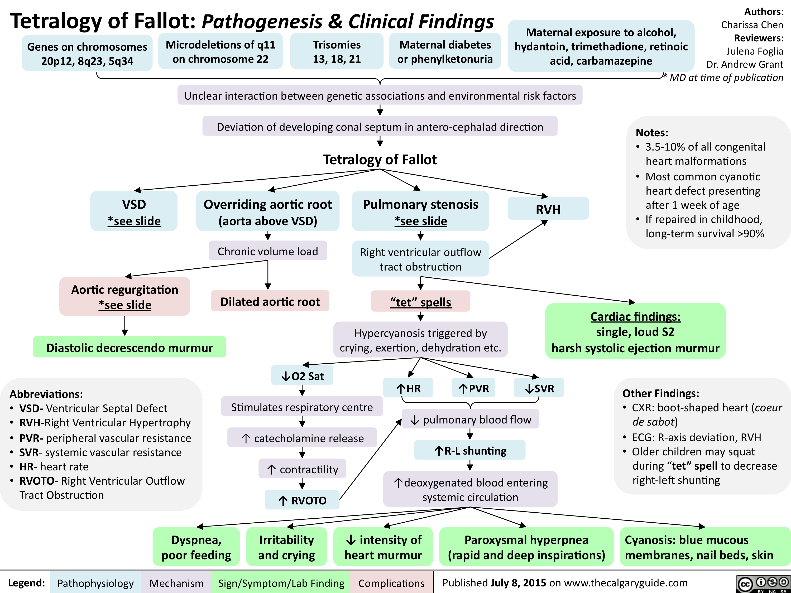 Tetralogy of Fallot-Pathogenesis & Clinical Findings ... on nephrotic syndrome pathophysiology, retinopathy of prematurity pathophysiology, typhoid fever pathophysiology, chronic obstructive pulmonary disease pathophysiology, cardiac tamponade pathophysiology, mitral valve stenosis pathophysiology, cushing's syndrome pathophysiology, sarcoidosis pathophysiology, bronchiolitis pathophysiology, mitral valve regurgitation pathophysiology, atrial flutter pathophysiology, ankylosing spondylitis pathophysiology, unstable angina pathophysiology, aspiration pneumonia pathophysiology, cardiogenic shock pathophysiology, umbilical hernia pathophysiology, pleural effusion pathophysiology, meningitis pathophysiology, aortic stenosis pathophysiology, alzheimer's disease pathophysiology,
