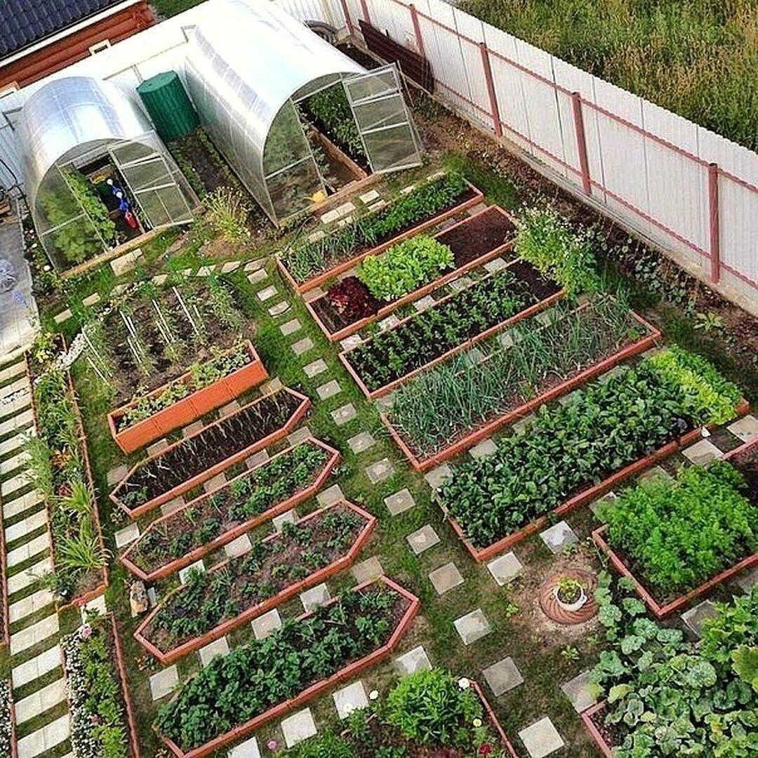35 Advantageous Small Vegetable Garden Ideas For Your: 842 отметок «Нравится», 24 комментариев
