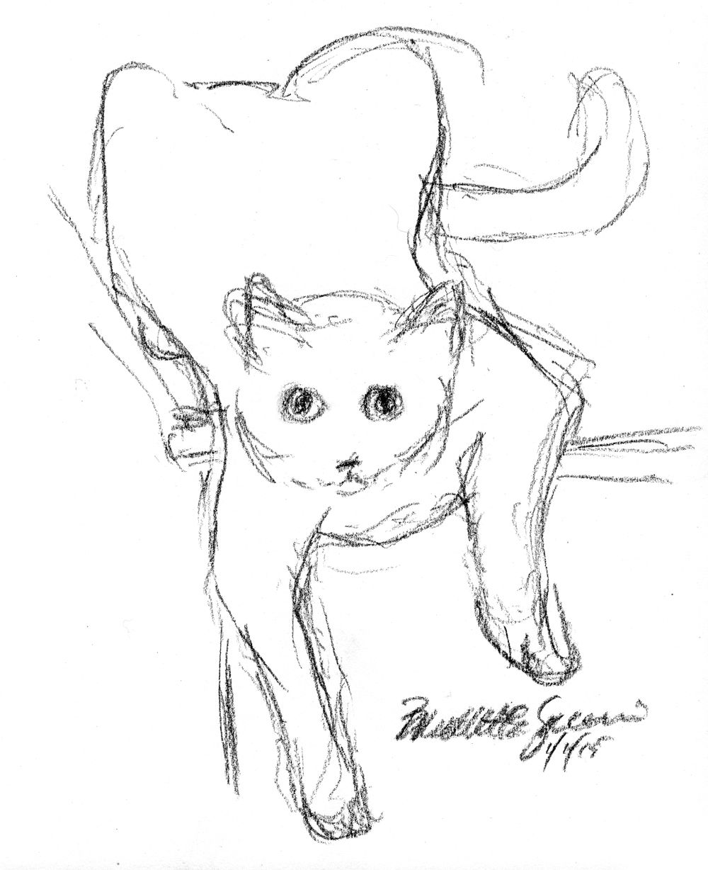 Daily Sketch Reprise Bella Being Silly, 2015 Sketches