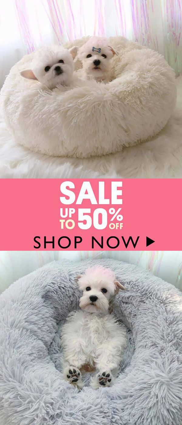 Comfy Calming Dog/Cat Bed (Buy 1 Get 2nd 10 off (Code