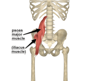 is your pelvis out of balance  health  fitness  yoga