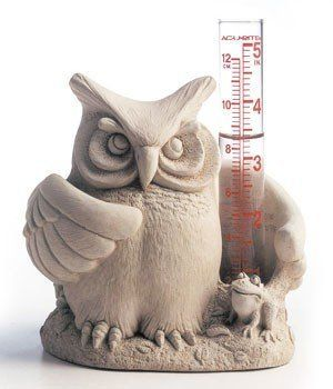 Cast Stone Whoou0027s Wet Owl Bird U0026 Frog   Rain Gauge Or Candle Holder  Concrete Sculpture