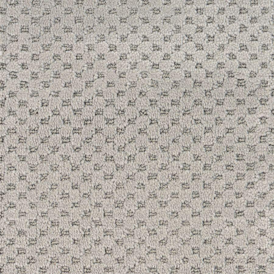 Stainmaster Petprotect Nile Cut And Loop Indoor Carpet At Lowes