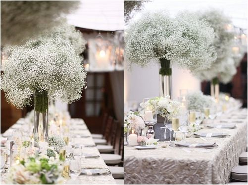 Gypsophila Aka Baby S Breath Is Back In Fashion Especially For Wedding Flowers
