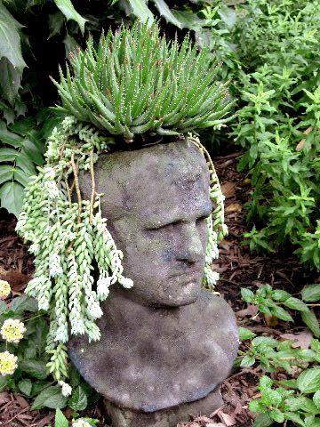 Handsome But Grumpy Male Planter Cranium Family