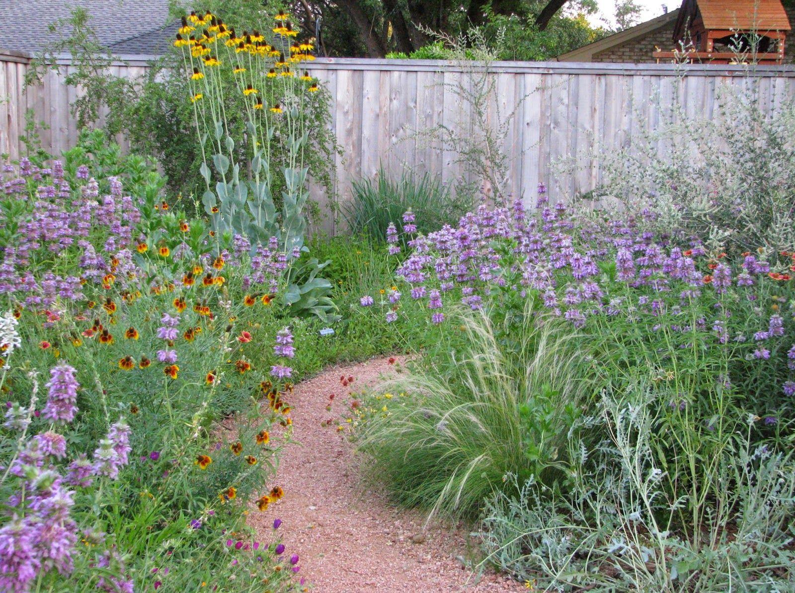 Plano Prairie Garden Water Wise Tour Retrospect Prairie Garden Texas Landscaping Plants Grown In Water