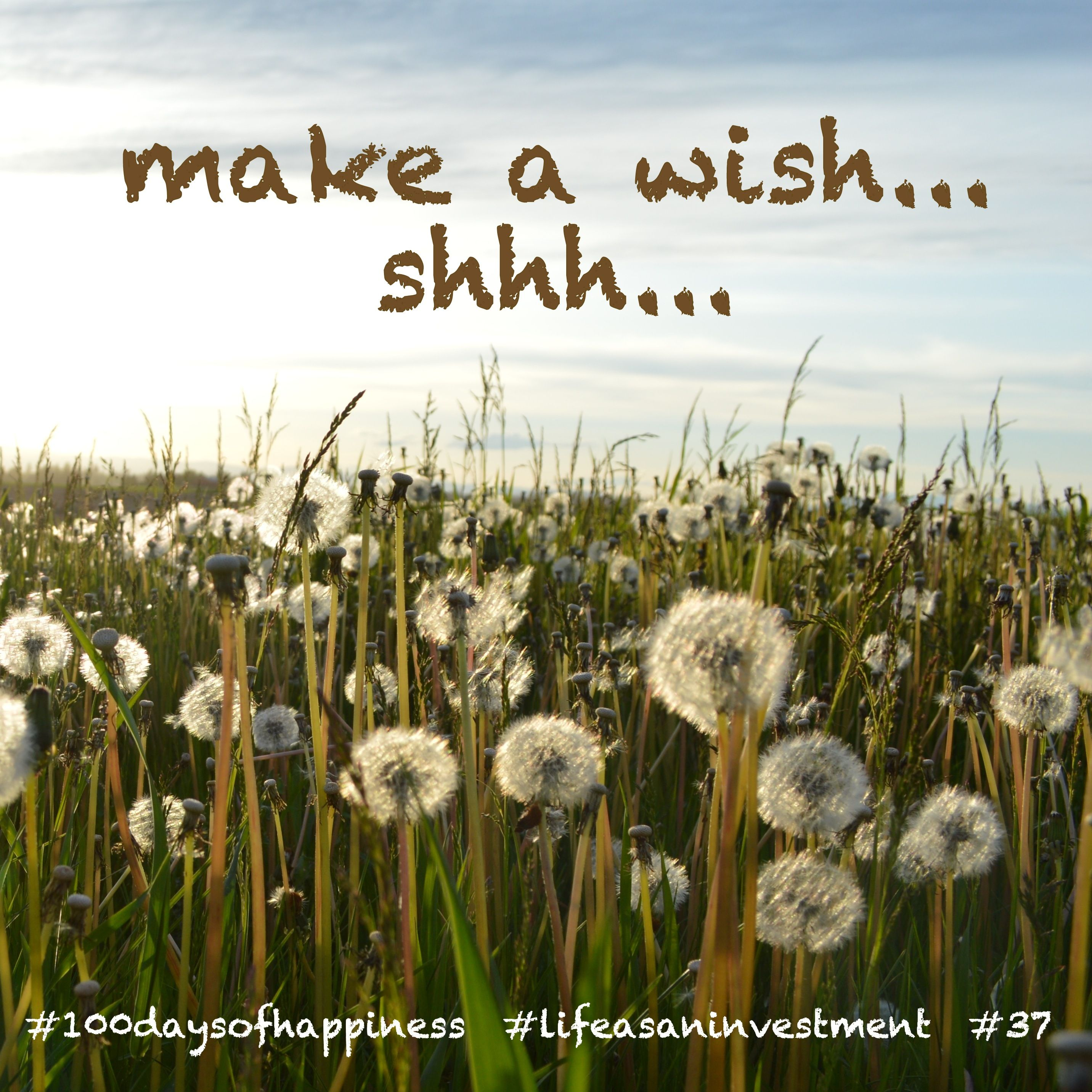 #happiness #100daysofhappiness #lifeasaninvestment