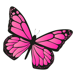 Detailed Pink Butterfly Vector Pink Butterfly Butterflies Vector Butterfly Drawing