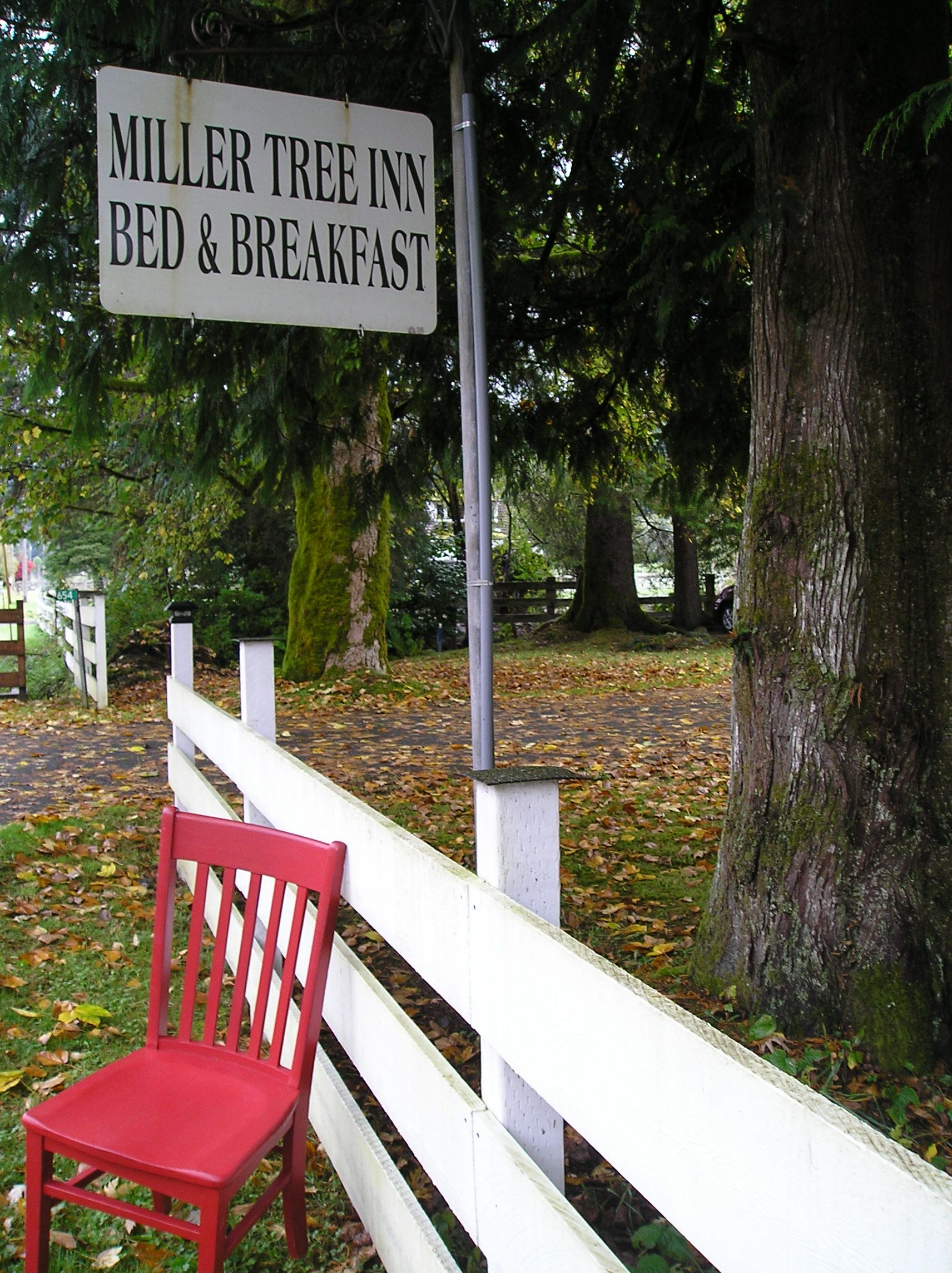 The Red Chair Travels visited the Miller Tree this October (2015). Follow RedChairTravels.com for more information!