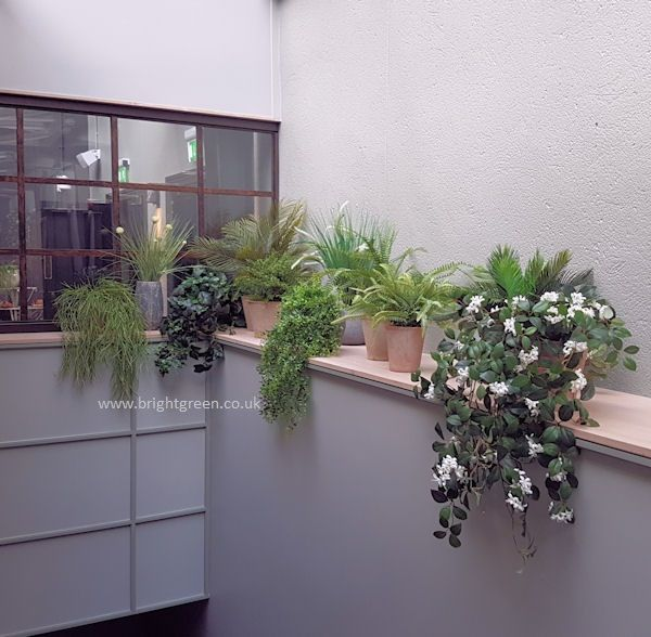 Bespoke Artificial Plants in Pots, Eclectic mix within a ...