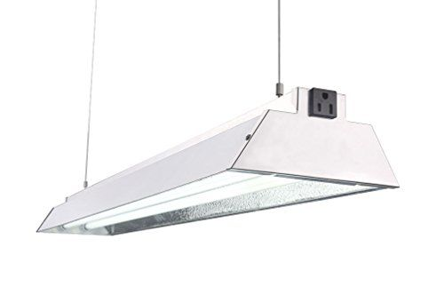 Durolux Dl842n T5 4ft 2 Fluorescent Lamps Grow Lighting System With 10000 Lumens And 6500k Full Sunlightspectr Indoor Grow Lights Grow Lights Best Solar Lights