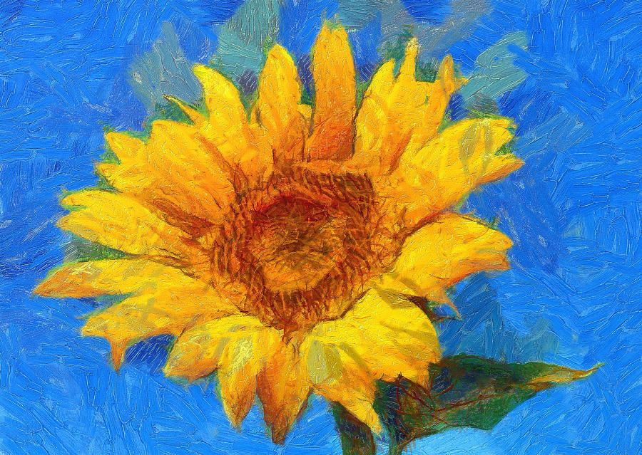 Dynamic Auto-Painter (DAP) is a fun to use software to automatically turn a photo or a 3D rendering into great looking painting inspired by some of the most famous real world artists