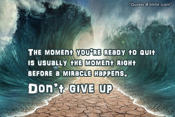 Explore Give Up Quotes, Encourage Quotes, And More!