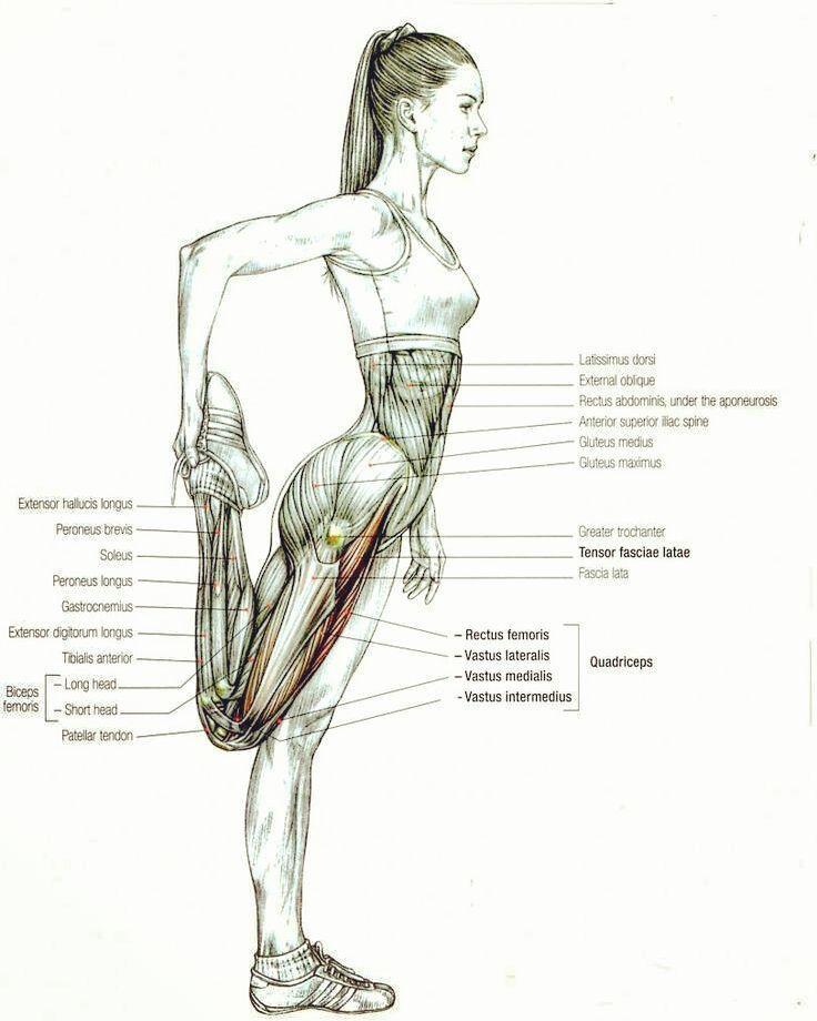 Always be stretching. | Massage | Pinterest