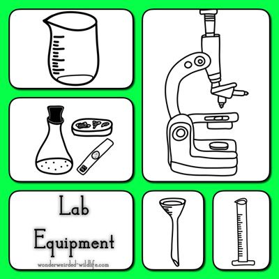 Lab Equipment Clipart Pictures Of Botany Tools Different Types Gear And Anything That A Botanist Might Use In His Daily For