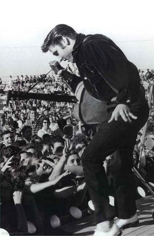 Elvis Presley Portrait Poster Elvis Presley Live Elvis