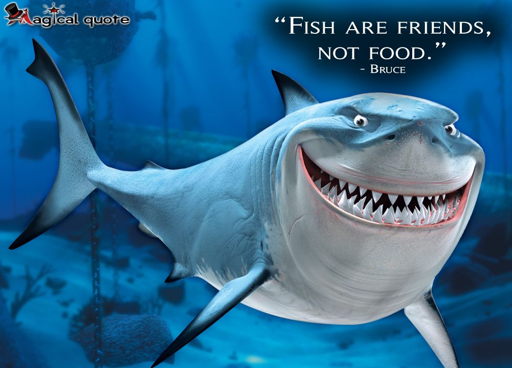 Findingnemo Bruce Fish Are Friends Not Food Movie Moviequotes