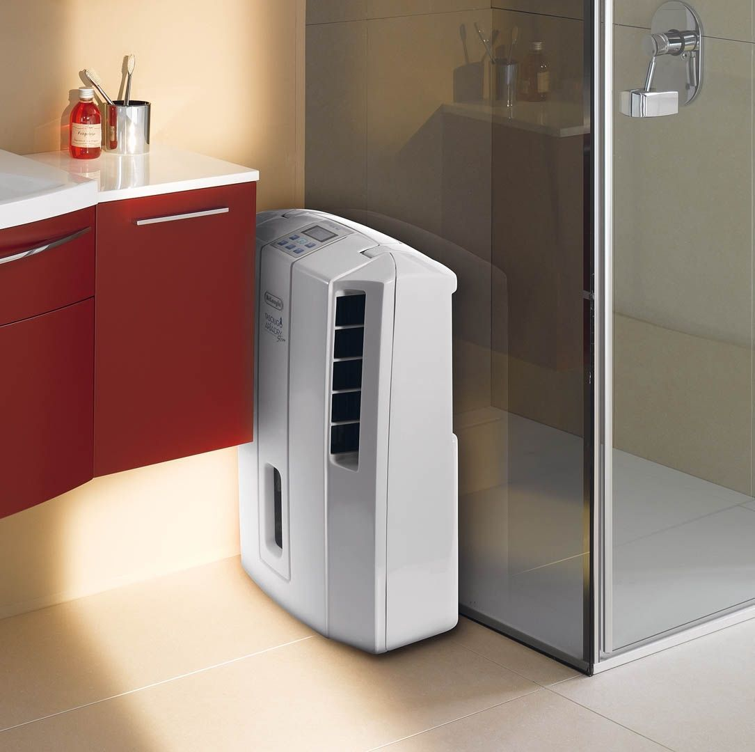 A Dehumidifier Can Take That Damp Feeling Out Of Bat Or Laundry Room And Prevent