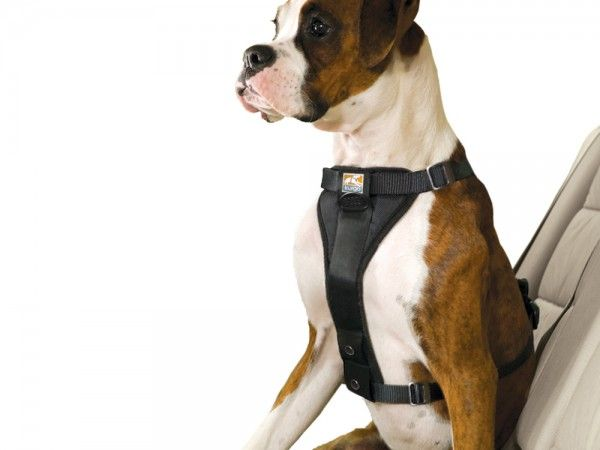 This Dog Car Harness Discovered By The Grommet Is Inspired By