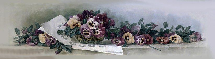 Пин от пользователя Светлана на доске цветы | Анютины ...