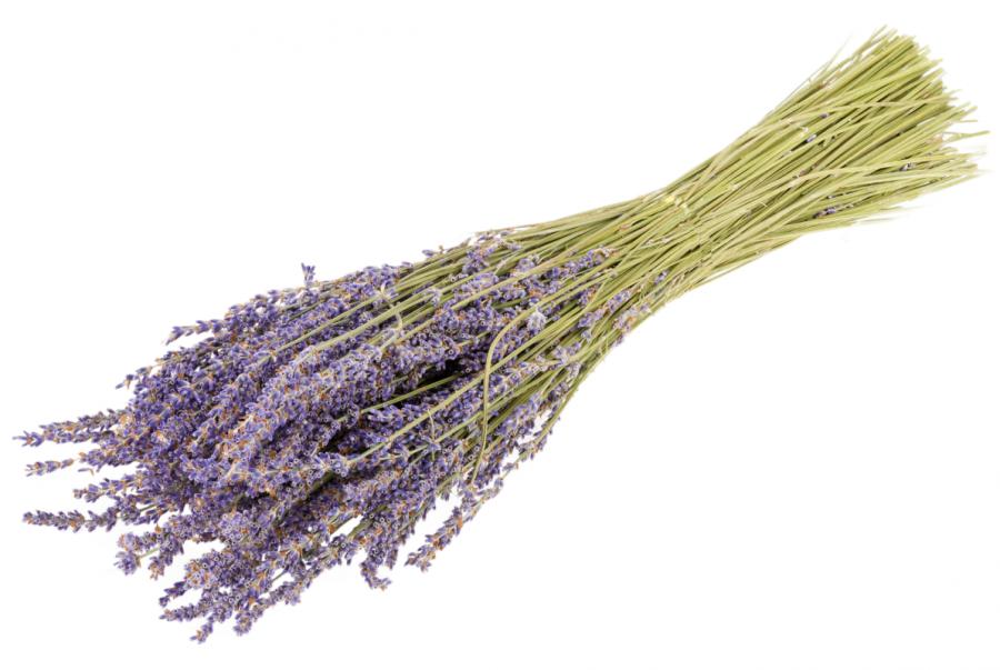 Badezimmer Deko Lavendel Mit Bildern Lavendel Lavendel Farbe