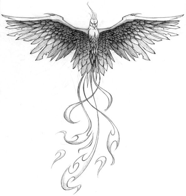 Phoenix tattoo.. Change the tail to feathers...