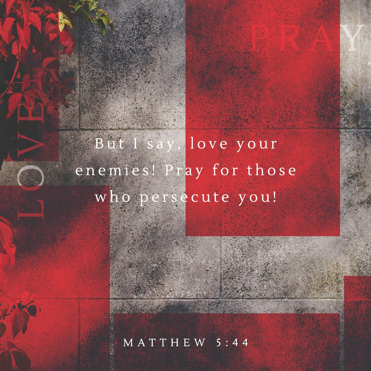 """Matthew """"You have heard that it was said You shall love your neighbor and hate your enemy But I say to you Love your enemies and pray for those who"""