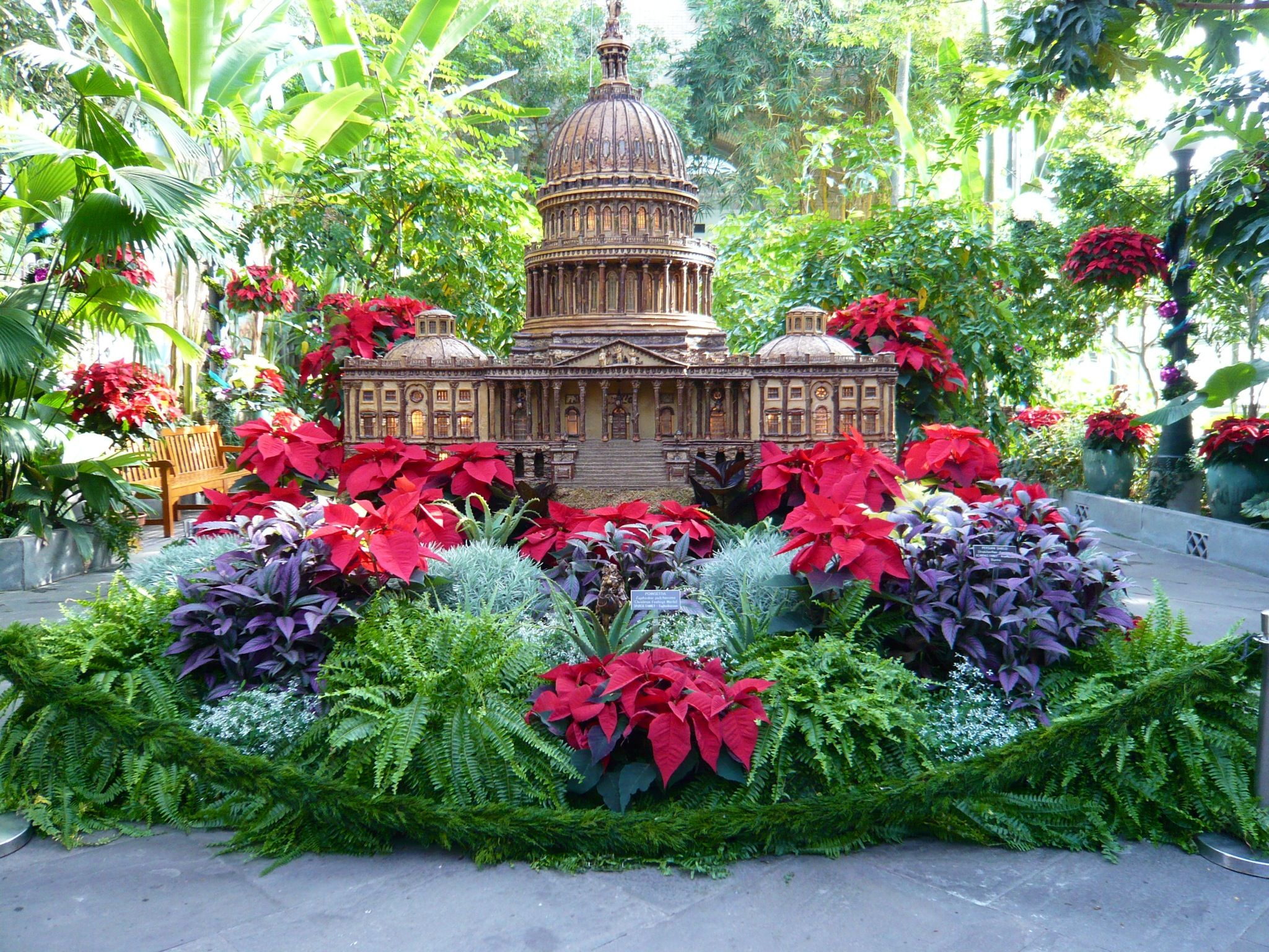 Botanical gardens dc fasci garden for Botanical gardens dc christmas