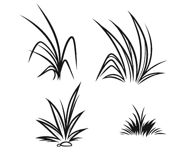How To Draw Grass Coloring Pages Color Luna Grass Drawing Grass Painting Cartoon Grass