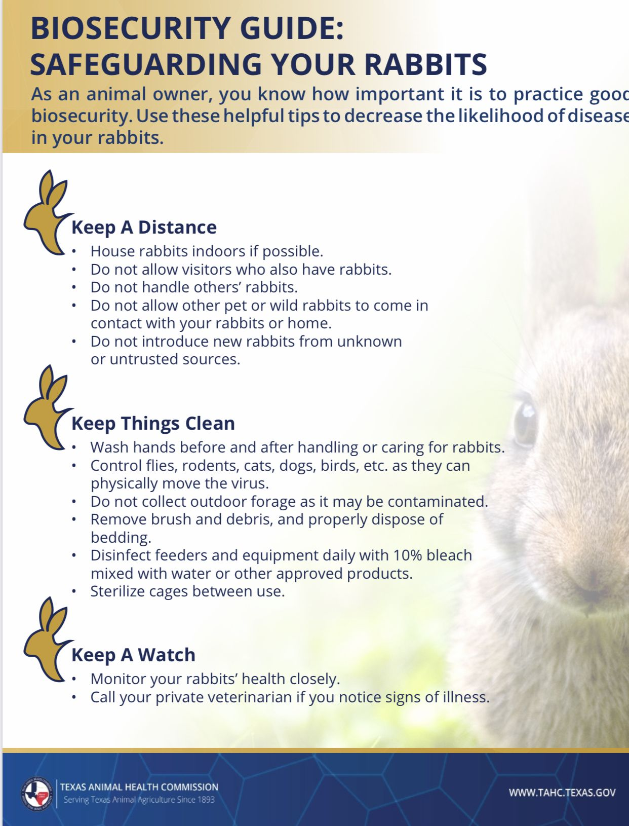 Biosecurity Guide Safeguarding Your Rabbits Tahc In 2020 Texas Animals Animals Pet Health