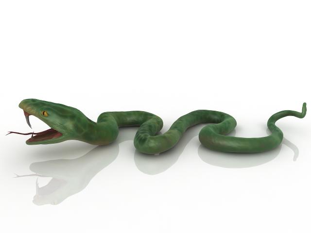 Green Snake 3d Model Download For Free In 2020 Snake Green Snake 3d Model