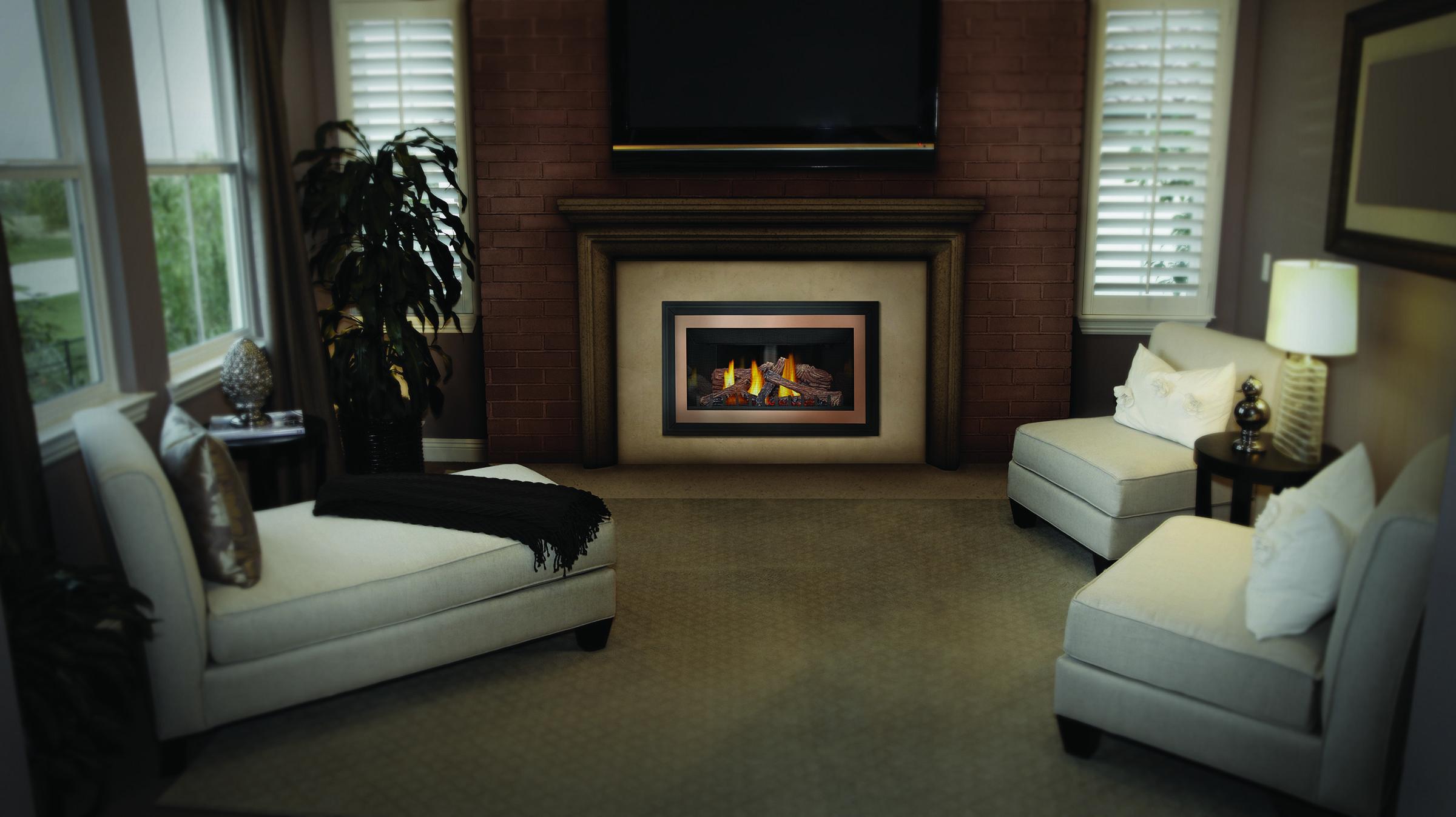 Napoleon Inspiration Gas Fireplace Insert Fireplace Inserts Gas Fireplace