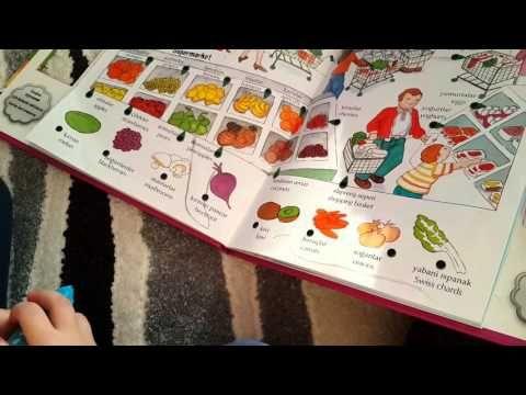 HANGİLERİ YEŞİL? – Montessori Etkinlikleri