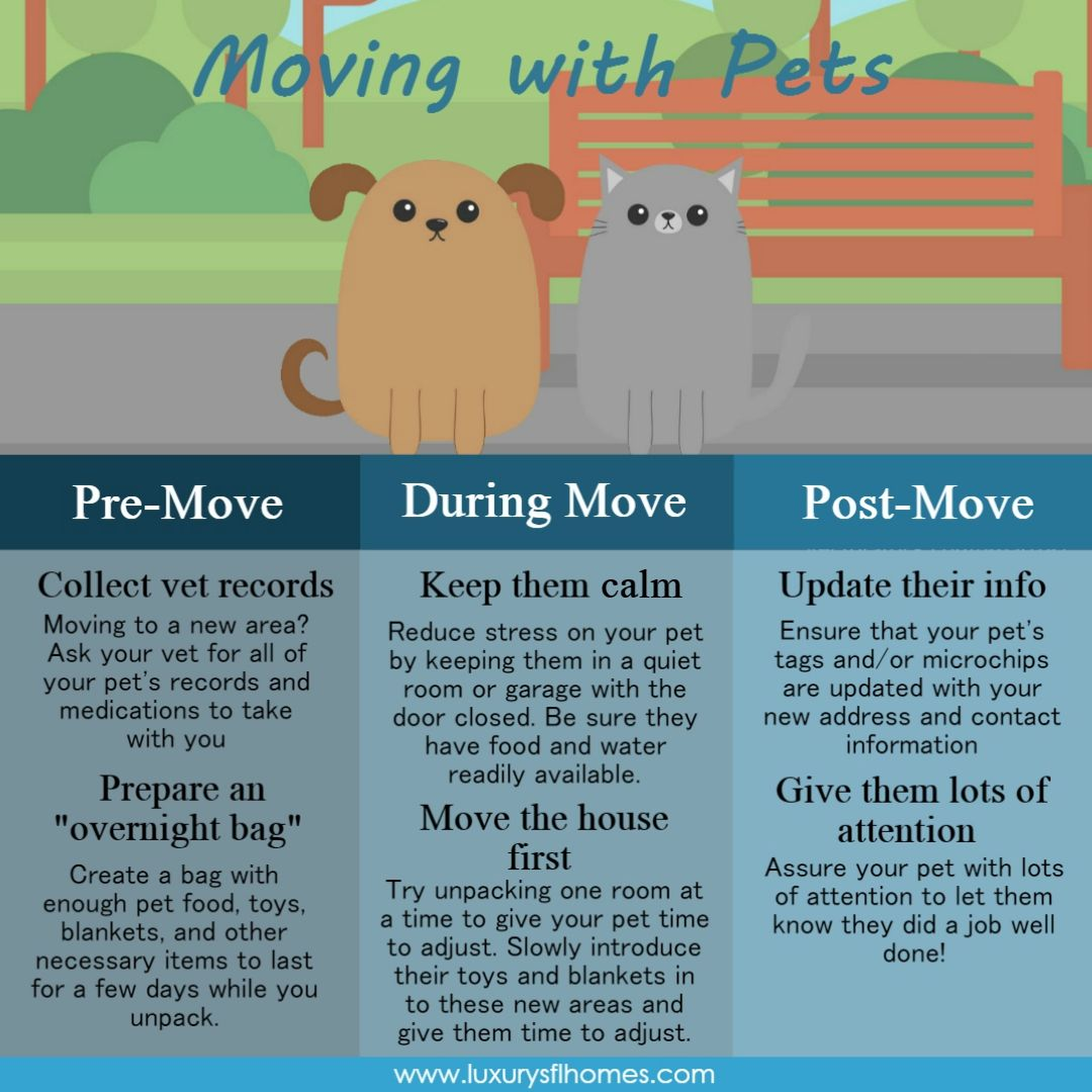 Moving with Pets PreMove Collect vet records Moving to