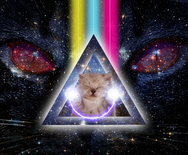space cats - Google Search | Junk Drawer | Pinterest ...