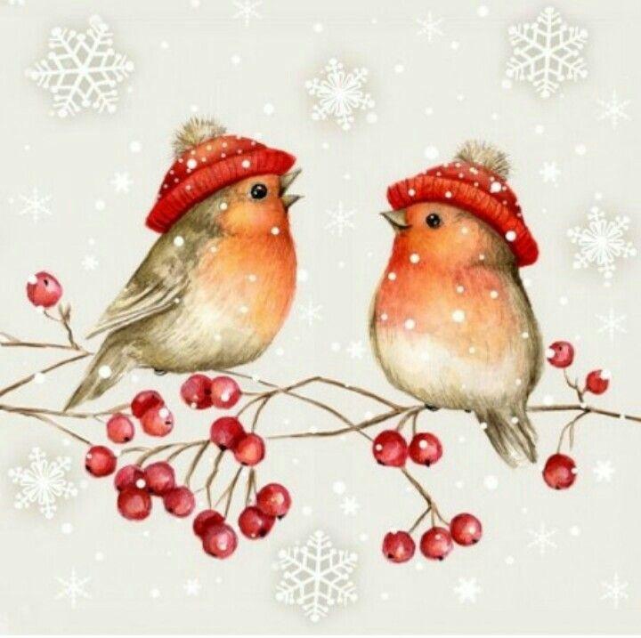 vögel im winter  aquarell weihnachten weihnachten