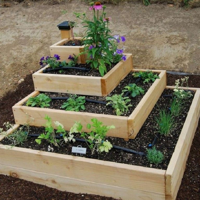 35 Advantageous Small Vegetable Garden Ideas For Your: 20 Best Productive Small Vegetable Garden Ideas For Your