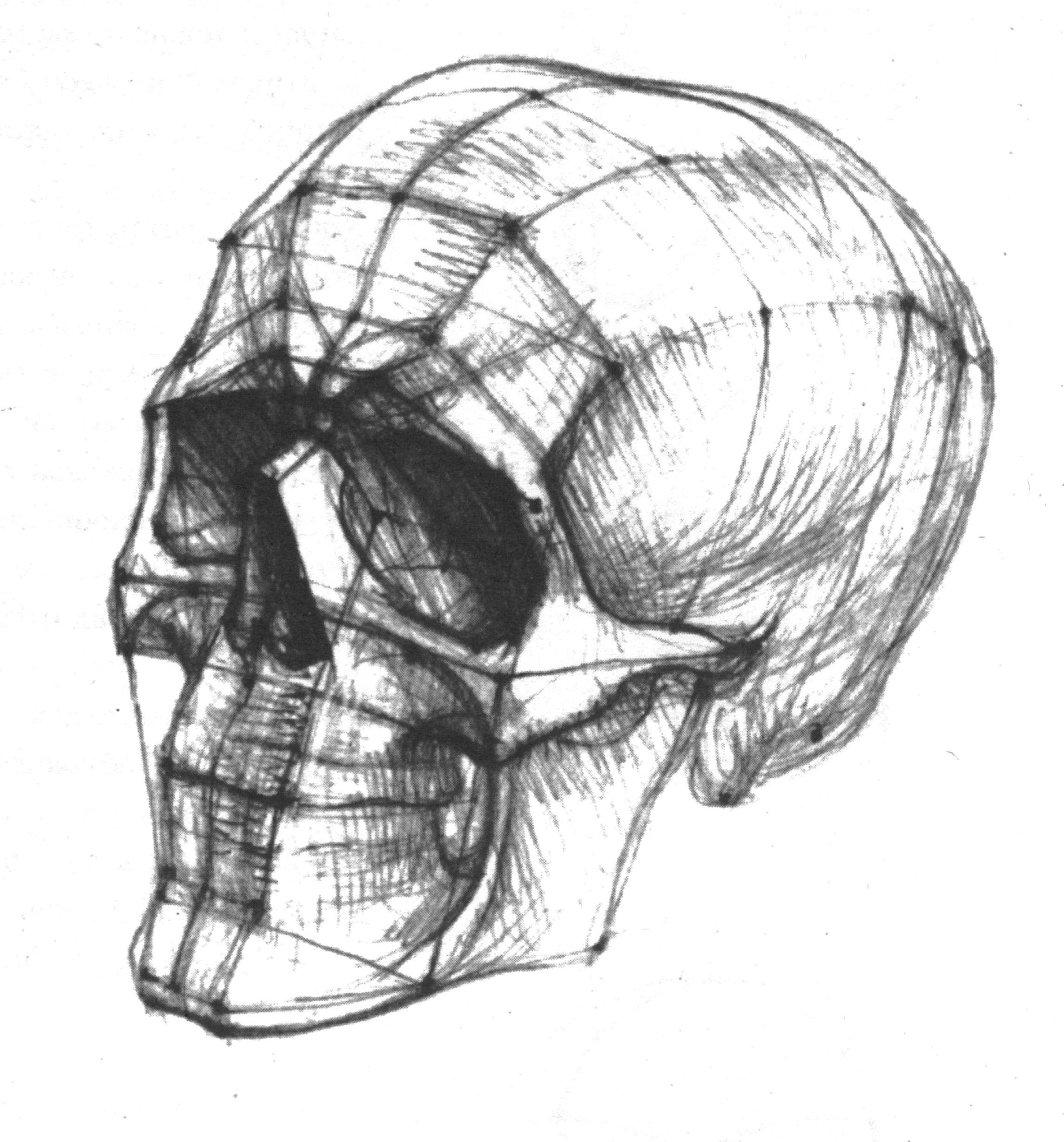 рисунок головы человека картинки вершиной уходим тропе