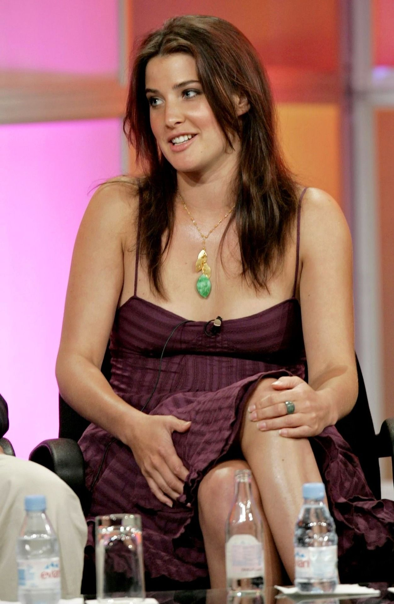 Young Cobie Smulders nude (97 photos), Hot
