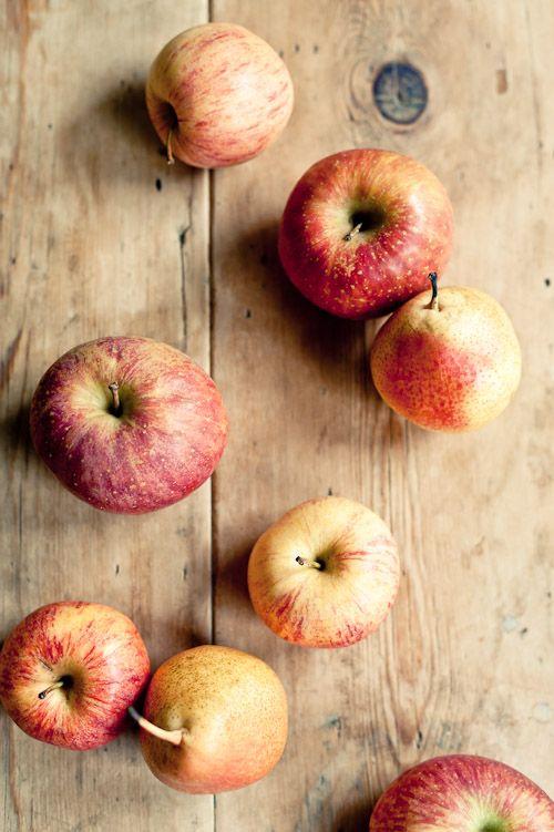 inside apples photos tumblr - 500×751