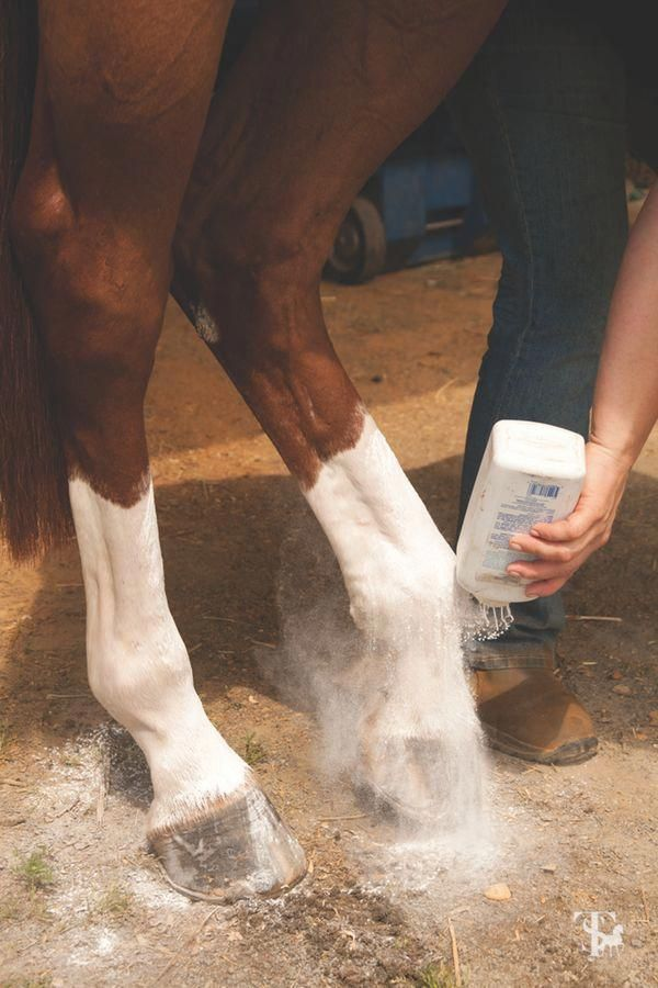 Brighten those white socks with a little baby powder! Photo by Amber Heintzberge...