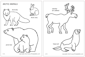 Arctic Animals Coloring Page Arctic Animals Polar Animals Artic Animals
