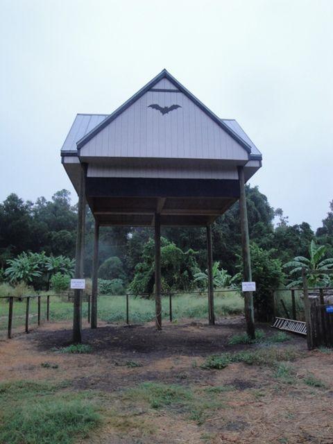 Large Bat House At The University Of Florida Gainesville