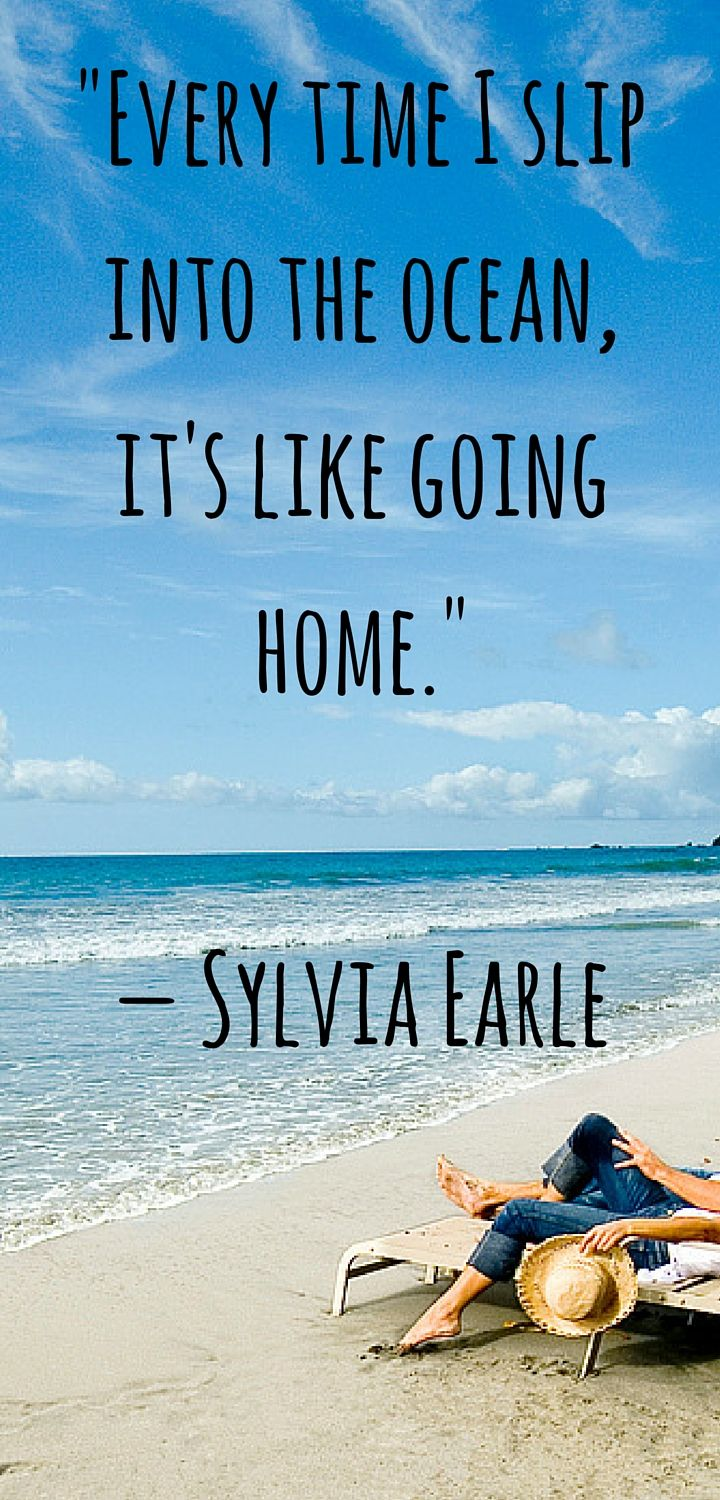 Our Favorite Ocean Quotes and Sayings | Diving~ Locations & Tips