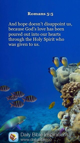 Daily bible inspiration and hope doesn 39 t disappoint us for Bible verses about fish