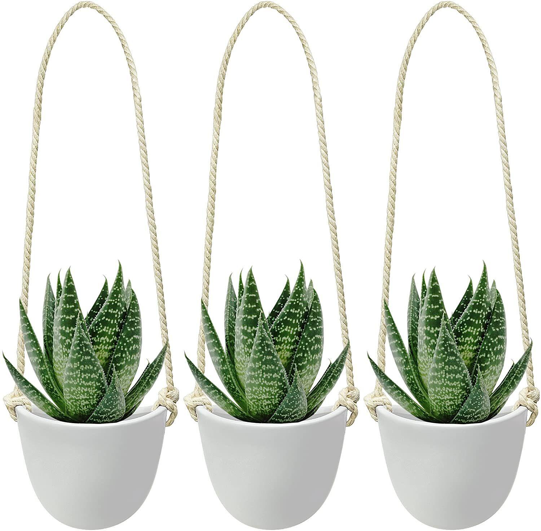 Ceramic hanging succulent planter modern wall decor