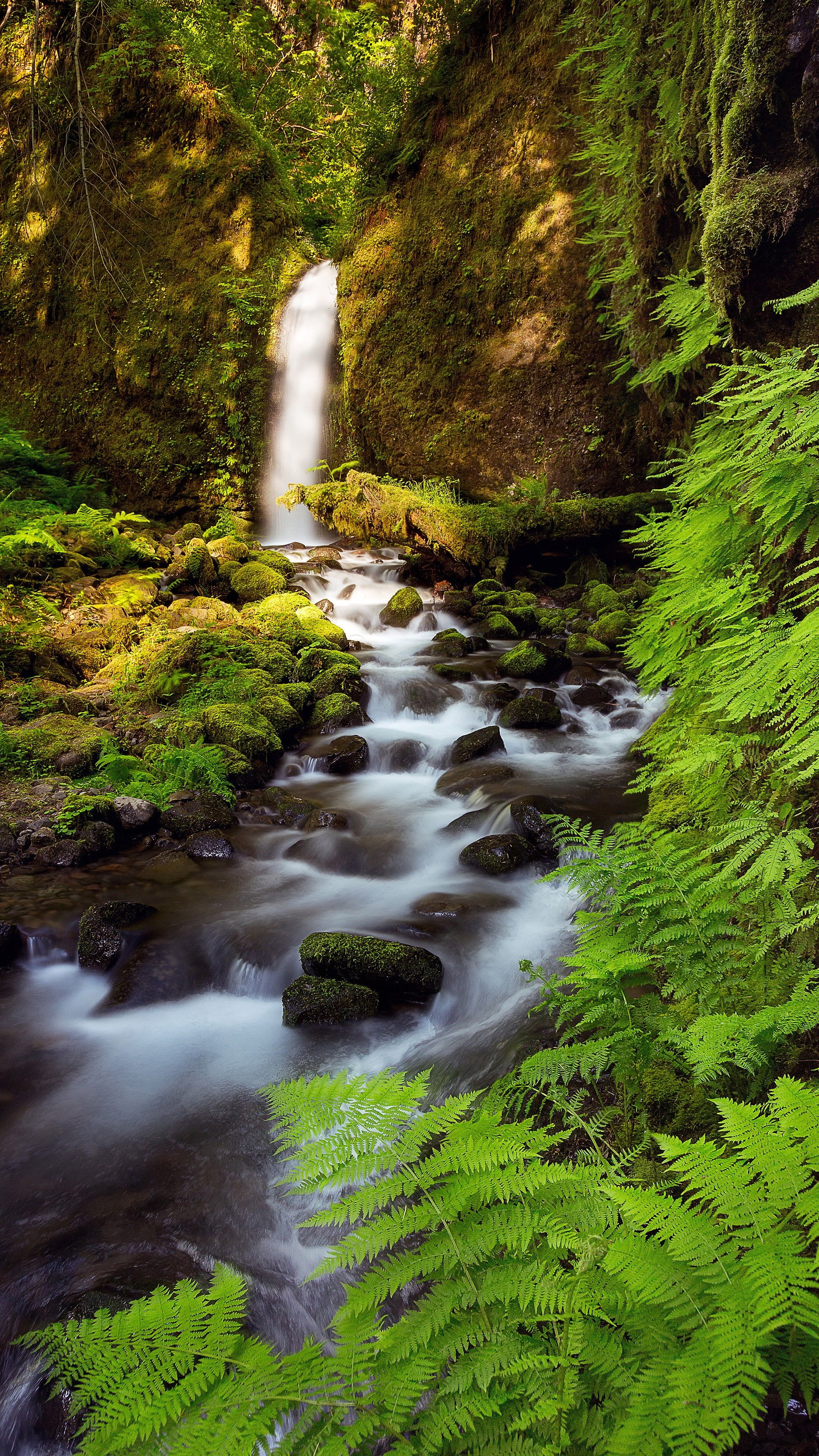 Landscape Vertical Creeks 4k Wallpaper Hdwallpaper Desktop In 2020 Beautiful Images Nature Waterfall Landscape
