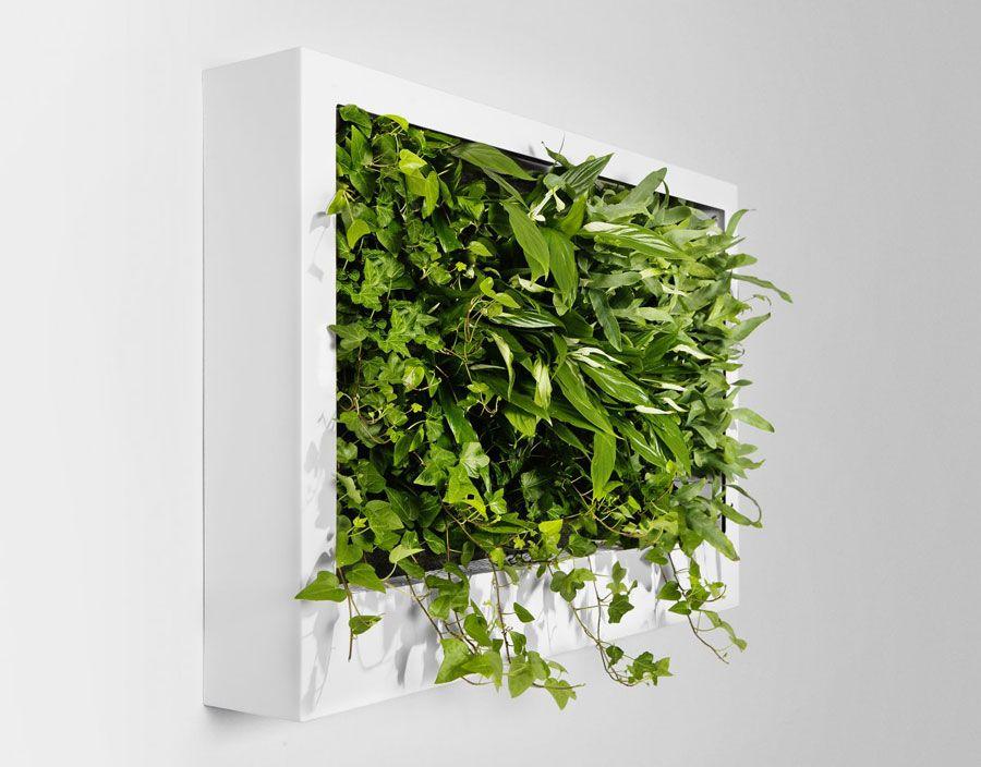 portable green wall design ideas - Wall Design Ideas