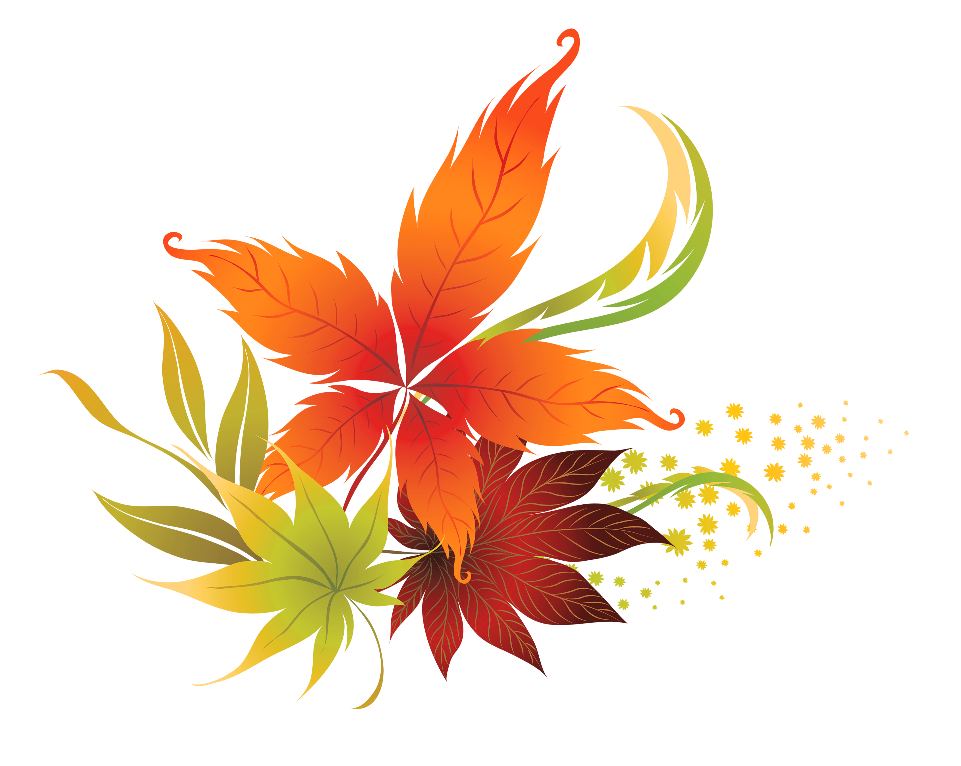 fall leaves fall leaf clipart no background free clipart images  [ 3191 x 2544 Pixel ]